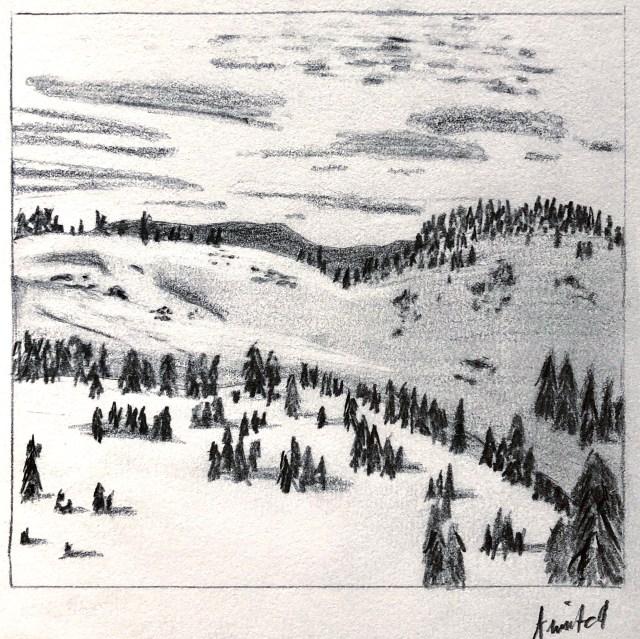 IMG_1931 copy