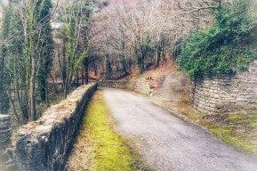 Walkway at Gothic Ruin, Heywood Demesne, Ballinakill