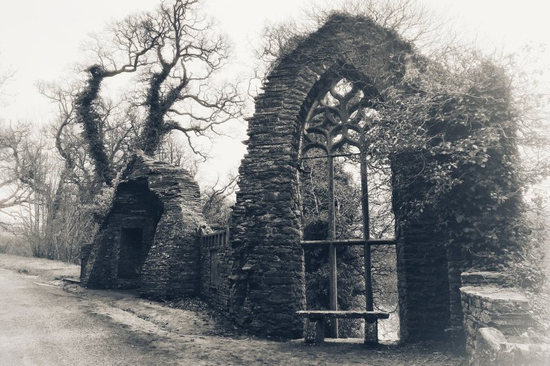 Ruin with a view - Gothic Ruin at Heywood Demesne, Ballinakill