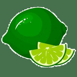 Twist-o-Lime Communications