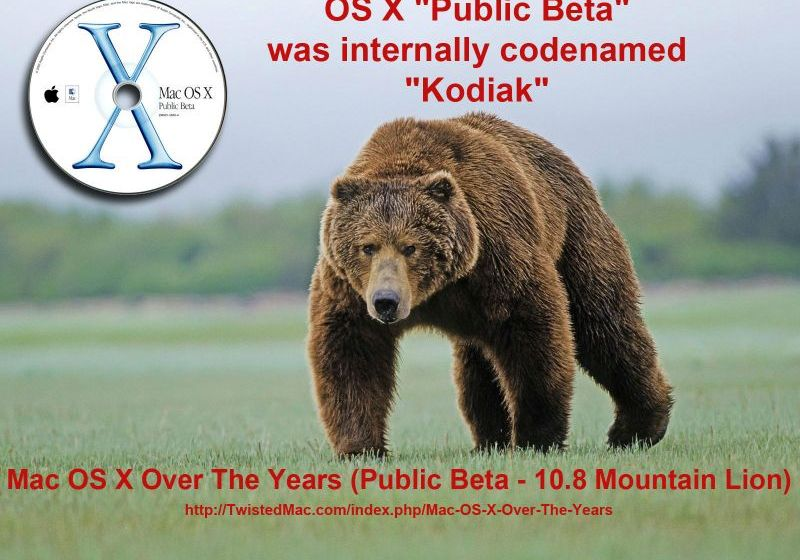 "Apples first OS X ""Public Beta"" was internally codenamed ""Kodiak"""
