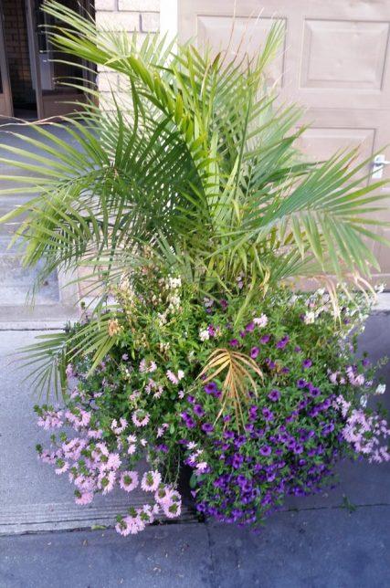 summer planters, pots & urns