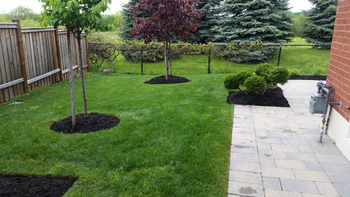 edge gardens and top up mulch