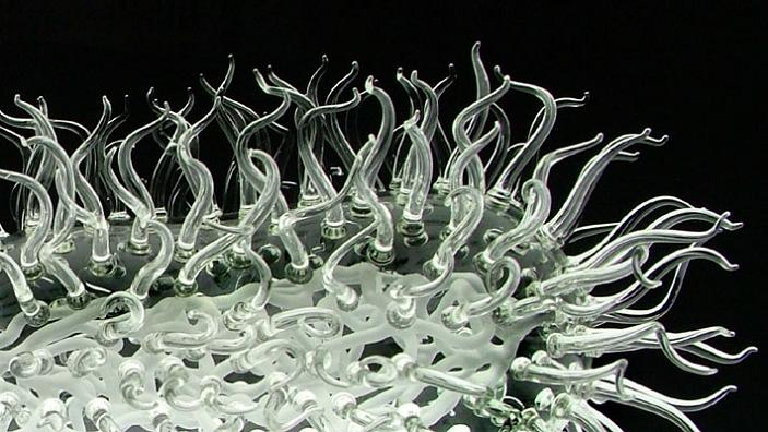 virus made of glass e coli luke jerram The Most Deadliest Art in the World