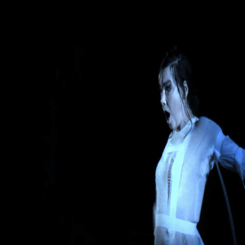 Video :Björk - Mouth Mantra