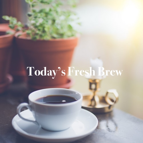 Today's Fresh Brew