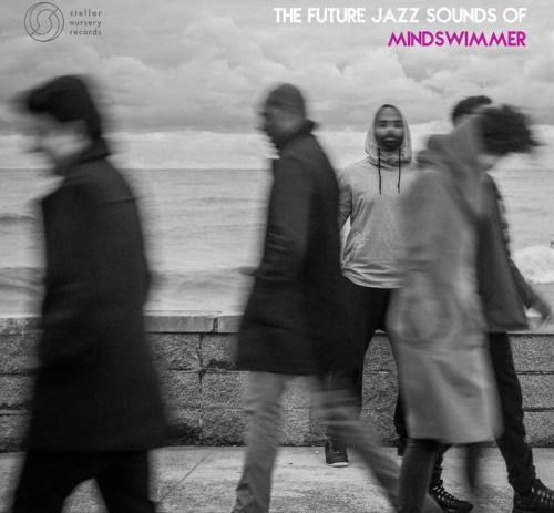 mindswimmer - the future jazz sounds of mindswimmer