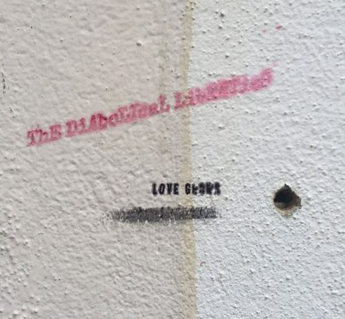 ThE DiAboLIcaL LibERTieS - LoVe gROwS / waREhOuSE