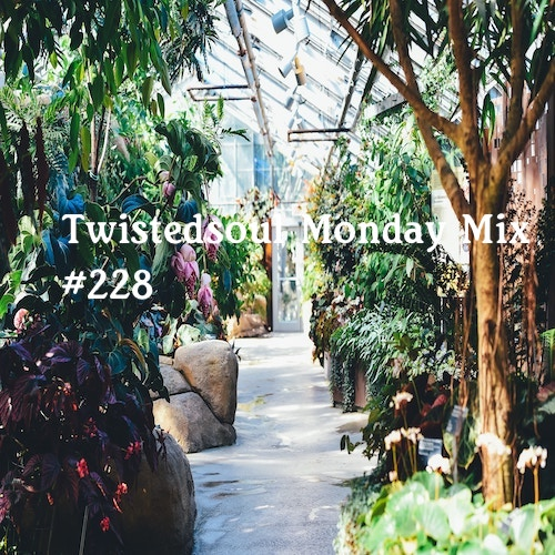 Twistedsoul Monday Mix #228.