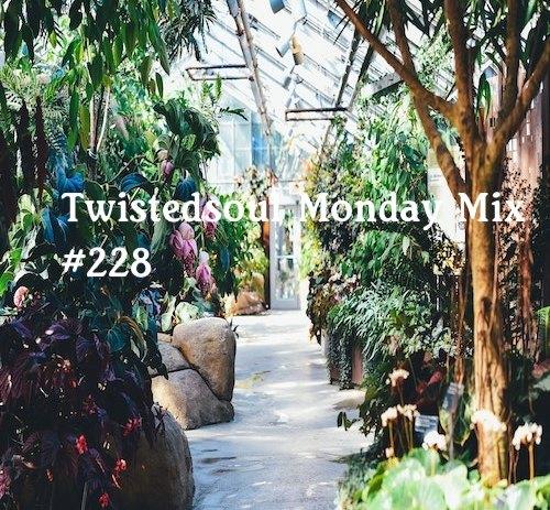 Twistedsoul Monday Mix #228.