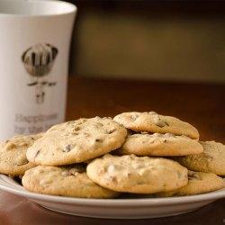 Chocolate Chip Pecan Cookies | Twisted Tastes