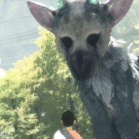 The Last Guardian Has Some Game Breaking Bugs In 4K/60 FPS, Here's How To Avoid Them