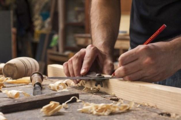 Timber Secrets Book