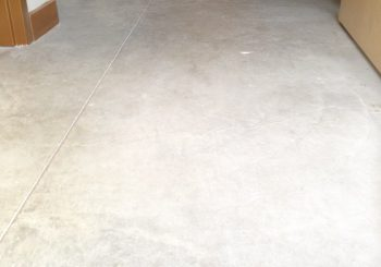 Office Concrete Floors Cleaning Stripping Sealing Waxing in Dallas TX 12 19c369cdad2d3d068f1918e82a01cda6 350x245 100 crop Office Concrete Floors Cleaning, Stripping, Sealing & Waxing in Dallas, TX