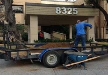 Post Construction on Walnut Street Lane 01 794ac6becef9220c13dabb4ec8892b73 350x245 100 crop Dental Clinic   Post Construction Clean Up on Walnut Street in Dallas, TX