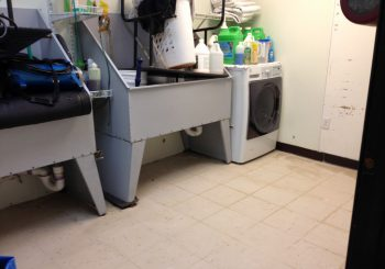 Waxing Floors in a Grooming School at Arlington TX 13 7248106400b80534514af861e09b10bc 350x245 100 crop Waxing Floors in a Grooming School at Arlington, TX