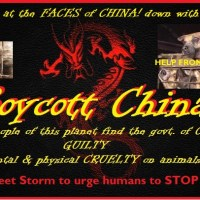 Boycott China 2 Tweet Sheet