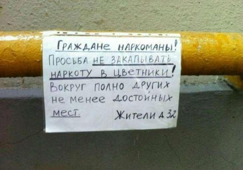 obyavleniya-dlya-sosedej_421