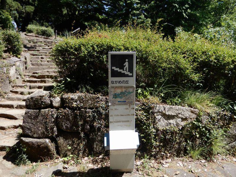 県立七沢森林公園ながめの丘