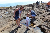 On the hunt at the tidal pools…Max always mugging for the camera.