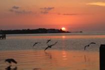 The sun sets over the Florida Keys.