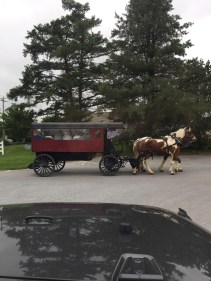 "Amish ""bus line"" in Intercourse, PA."