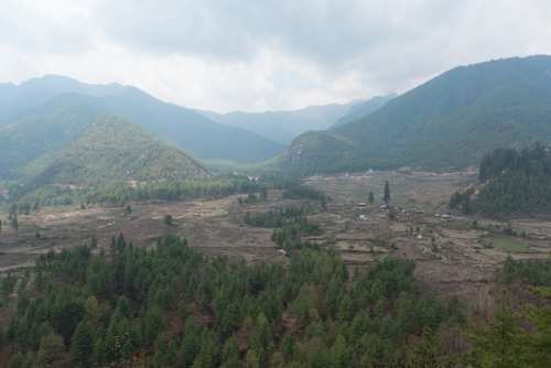 A view of the Paro Valley.