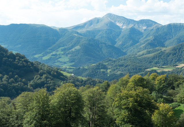 As we descended to lower heights, the valley became more forested.