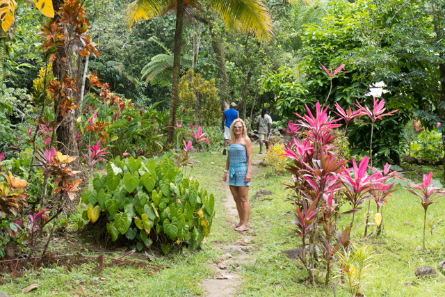 Walking around in a Rasta settlement on Dominica.  Steps from beautiful trail  were probably 20 individual garden plots full of fruits and vegetables.