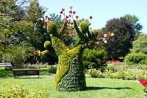 Canada, The Heart Tree