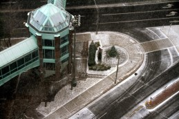Snow on Ted Rogers Way
