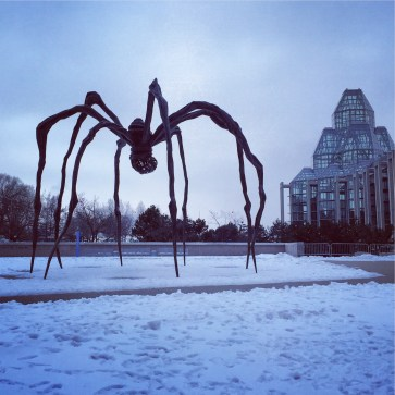 Attack of the Spider!
