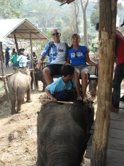 Passear de elefante