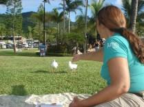 Dividindo nossos biscoitos com as gaivotas. É um perigo porque uma vem e depois vêm todas.