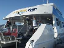 Catamarã que nos levou até os corais