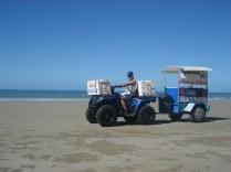 Vendedor de praia – Munch Buggy – muito fino