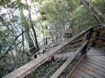 Escadarias da trilha