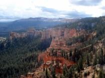 A 2.688 m a vista com floresta