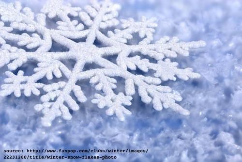 3 Warm Winter Destinations & 3 Cool Winter Activities