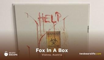 """Bears' Escape """"Fox in a Box"""" in Vienna"""
