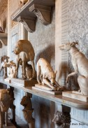 Dog sculptures in the Vatican Museum