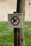 No poos allowed, Rothenburg