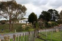 Rural road, New Zealand North Island