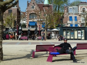 Museumplein bench seats, Amsterdam