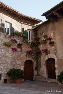 Flower boxes on the walls of a home in Assisi