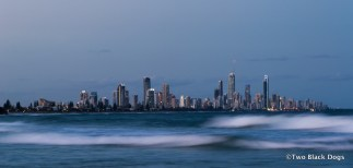 The high rise buildings of Surfers Paradise