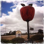 The big apple at Stanthorpe