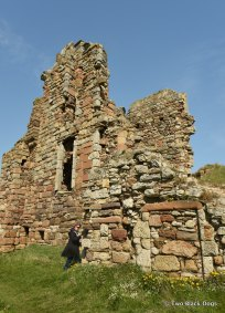 Newark Castle ruins