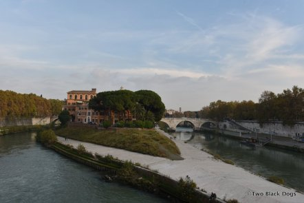 A view of Tiber Island from the Ponte Garibaldi