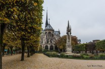 Square Jean XXIII and the Notre Dame Cathedral